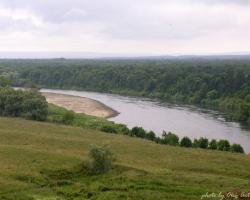 Речные экосистемы