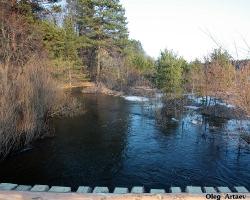 Разлив реки Калыши. Васильевская дамба