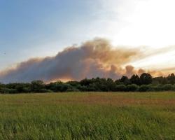 Лесной пожар в Барахмановском лесничестве НП